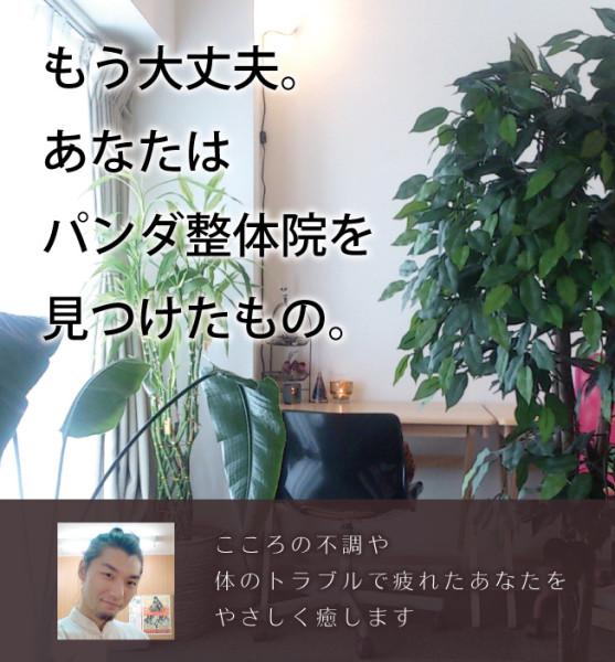 トップコンテナ内ビッグイメージ_03